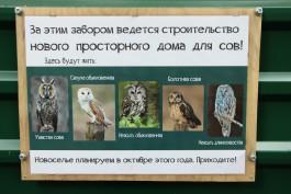 В калининградском зоопарке строят вольеры для сов