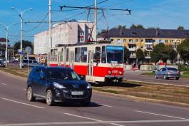 «Вторым рядом»: ГИБДД устроила облаву на нарушителей разметки на улице Шевченко в Калининграде