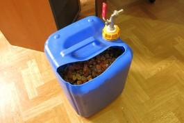 Из Калининградской области пытались вывезти более 20 кг янтаря в канистре с водой