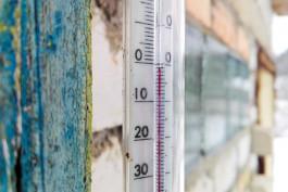 К концу рабочей недели в Калининградской области ожидаются заморозки