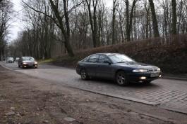 Врио губернатора выступил «сильно против» застройки парка на ул. Донского в Калининграде