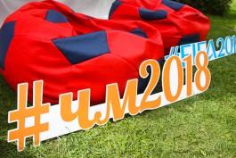 Опрос: Около 90% калининградцев воодушевлены чемпионатом мира по футболу 2018 года