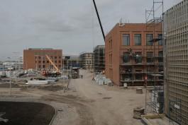 Минкульт просит нарастить темпы строительства музейно-образовательного комплекса на Острове в Калининграде