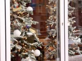 Опрос: Почти 50% калининградцев планируют провести новогодние каникулы дома