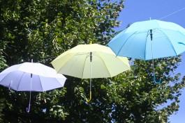 Синоптики прогнозируют дождь и потепление в Калининградской области