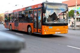 В Калининграде столкнулись автобус и легковушка: пострадала 43-летняя женщина