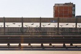 В Калининграде начали обновлять мосты