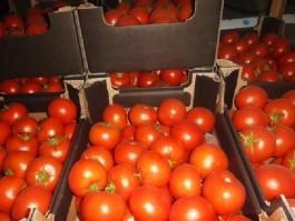 В Калининградскую область не пустили 20 тонн волгоградских томатов