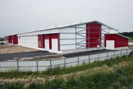 В Багратионовском округе запустили птицеводческий инкубаторий на 45 млн яиц в год