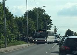 На ул. Суворова в Калининграде столкнулись два автобуса