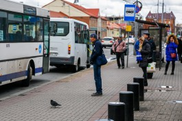 В Калининграде часть автобусов и маршруток не выходят на линию из-за коронавируса у водителей