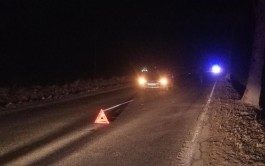 В Гусевском округе «Митсубиси» насмерть сбил пешехода