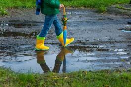 В Калининградской области ожидается дождливая рабочая неделя