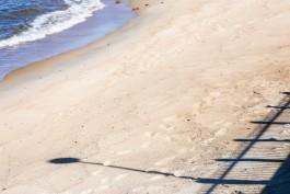На пляже в Отрадном нашли тело 34-летнего мужчины