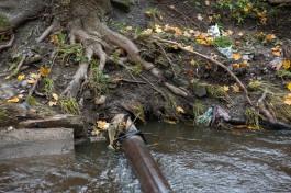 На расчистку русла Гагаринского ручья в Калининграде выделили 66 млн рублей