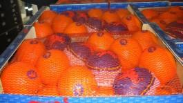На полигоне в Калининградской области уничтожили более 30 тонн овощей и фруктов