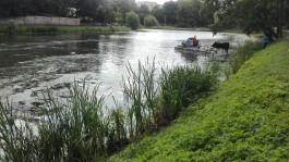 «Запустили амфибию»: в Калининграде начали очистку Нижнего озера