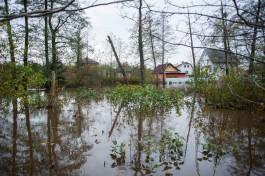 Крупин: Около 15% территории Калининграда занимают водоёмы