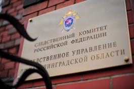 СК: Мужчину, чьи останки нашли на побережье в Куликово, застрелили