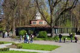 Соколова: Если двигаться сегодняшними темпами, на реконструкцию зоопарка потребуется 60 лет