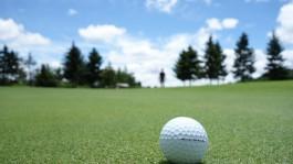 Сбербанк о гольф-клубе под Светлогорском: У нас ещё не было предметного разговора с инвестором