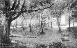 «Кёнигсберг в деталях»: нижнее течение Паркового ручья (Нойе Бляйхе)