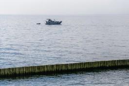 Гидрометцентр: Калининградская область и Москва обогнали Крым по температуре воды