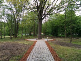 «Круги на воде и декоративный остров»: как в Зеленоградске планируют благоустроить парк в 2019 году