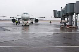 Правительство предлагает запустить чартерные рейсы в Калининградскую область