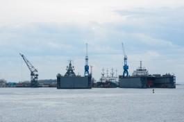 «Росморпорт» опубликовал заказ на строительство парома для линии Балтийск — Усть-Луга за 5,1 млрд рублей