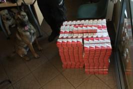 Польские таможенники нашли в калининградском рейсовом автобусе более 1000 пачек сигарет