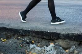 Власти Калининграда выбрали подрядчика для ремонта тротуара на Тенистой аллее