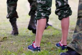 «Тысячи свиноматок, военные сборы и ремонт на Нижнем озере»: цифры недели