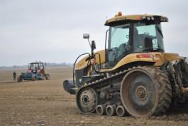 Минпромторг поддержит производителей льна в Калининградской области