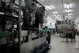 ФСБ: В Калининградской области обнаружили подпольные линии по производству алкоголя