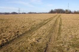 Польско-российский инвестор арендовал землю в Багратионовском районе под агробизнес