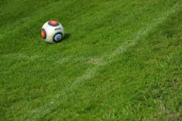 На стадионе к ЧМ-2018 в Калининграде засеяли футбольное поле