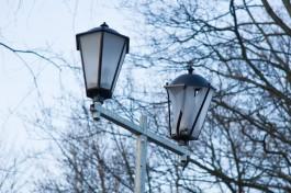 Полиция завела уголовное дело на подростка, который разбил 20 фонарей в парке Ладушкина
