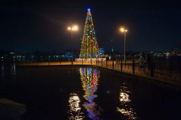 «Площадь, скверы и озёра»: как Калининград украсят к Новому году