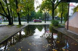 Синоптики обещают калининградцам дождливые и прохладные выходные