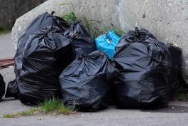Власти Калининграда пообещали ежедневно контролировать вывоз мусора в новогодние выходные