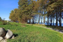 «Инстаграм-маршрут»: чиновники проехали по недостроенной велодорожке вдоль балтийского побережья
