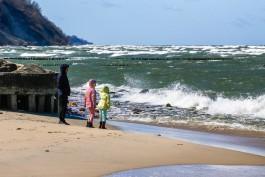 В четверг в Калининградской области ожидается усиление ветра