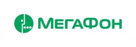 Абоненты «МегаФона» в Калининграде скачали в новогоднюю ночь 20 ТБ данных