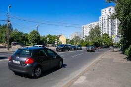Для строительства нового моста в Калининграде планируют вырубить более тысячи деревьев