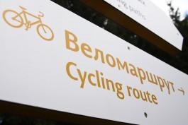 Велодорожку на Куршской косе с местами для отдыха построят с помощью новых технологий