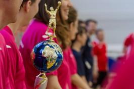 Крупнейшие предприятия региона разыграют кубок «Ростелекома» по волейболу