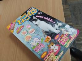 В Японии вышел комикс-манга про Зеленоградск и котов