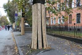 На улице Комсомольской в Калининграде организуют велодорожку на проезжей части