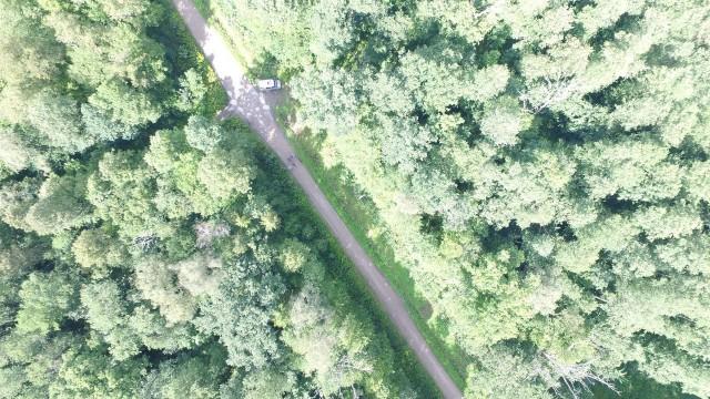 Влесу под Багратионовском найден пропавший три дня назад грибник